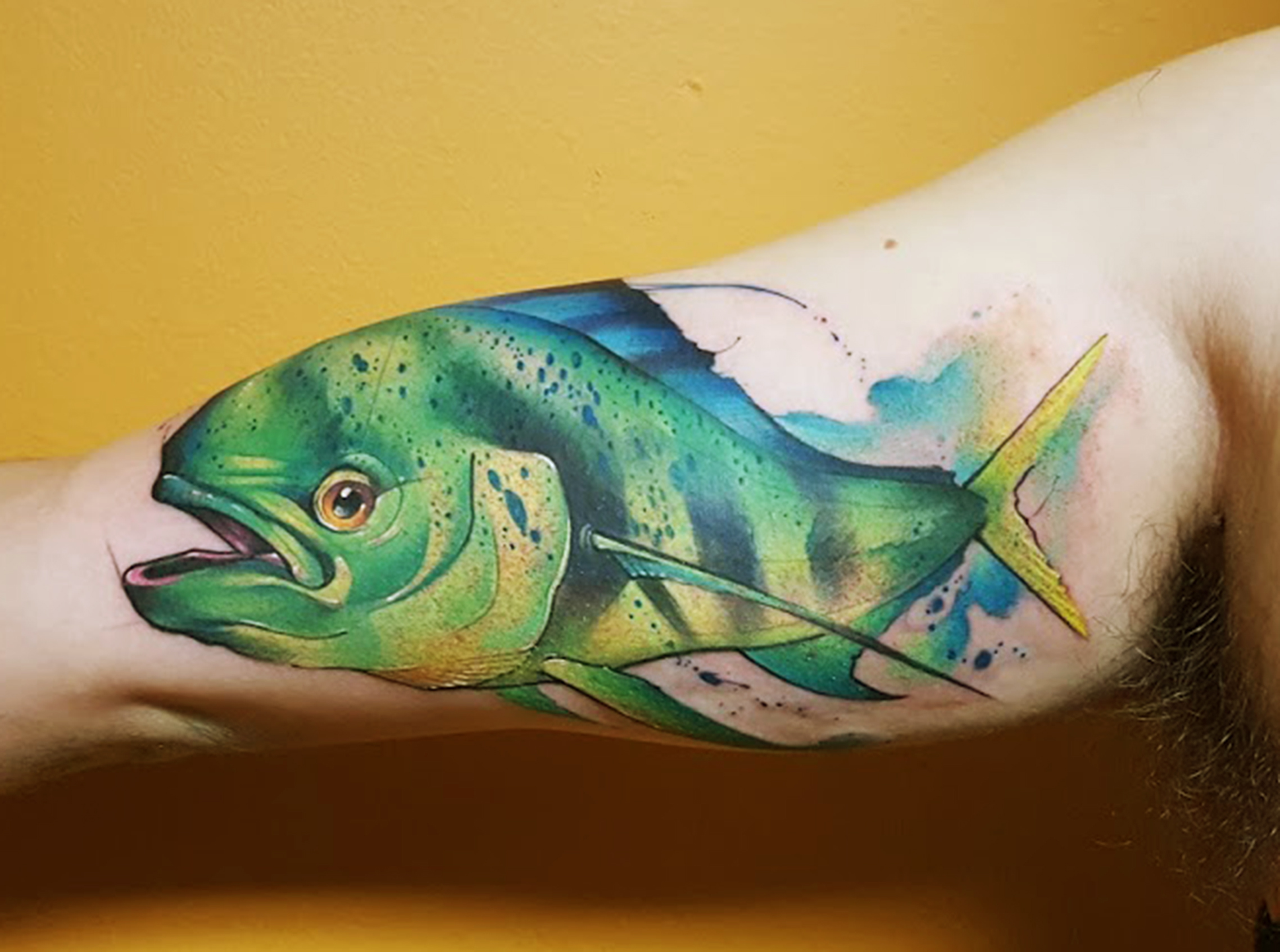 Watercolor Tattoo Dorado sport Fish.jpg