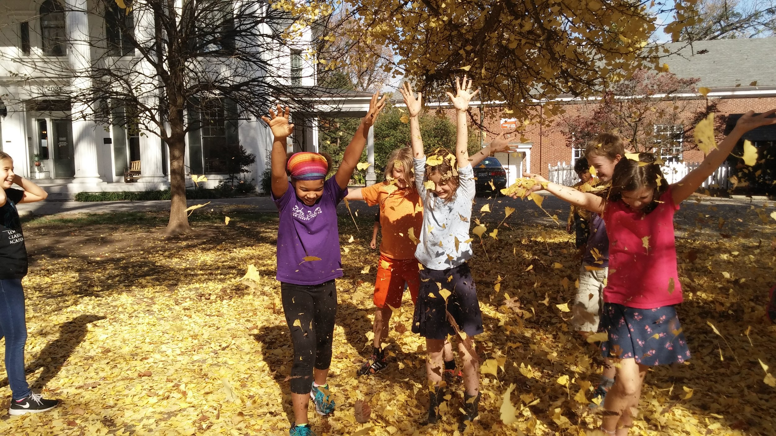 kids w_leaves (1).jpg