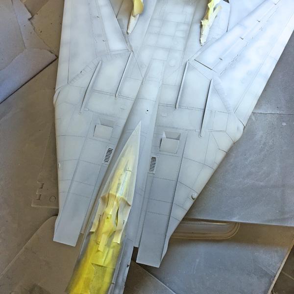 29 BN-Ac-Trumpeter-F-14D Super Tomcat, 1.32.jpg