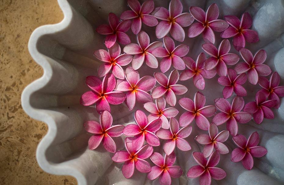 Spa-Flowers-1.jpg