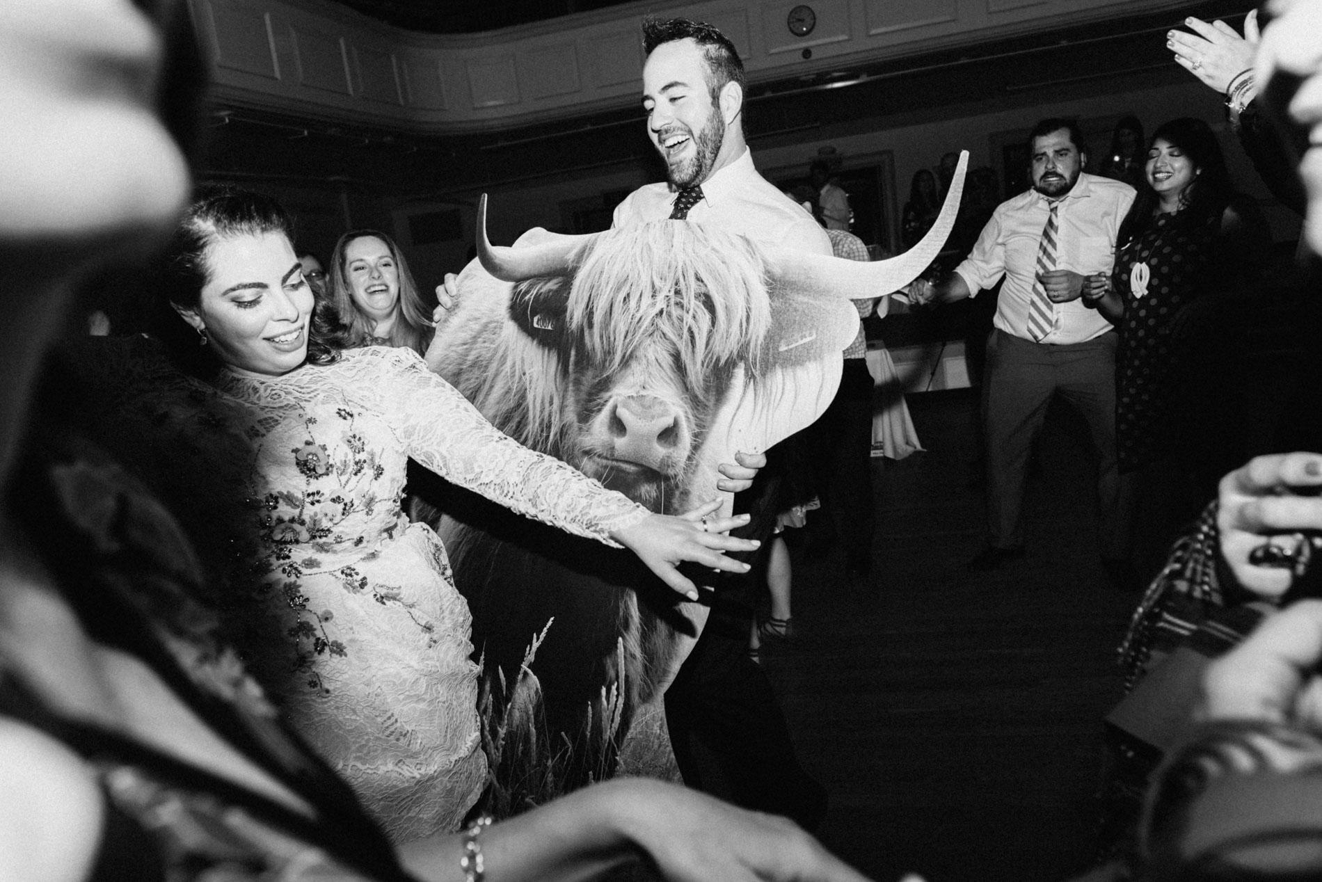 cow-cutout-boston-wedding-photographer-boston-wedding-irish-themed-wedding-boston-acorn-street-engagement-destination-wedding-photographer-traveling-wedding-photographer-ireland-wedding-photographer