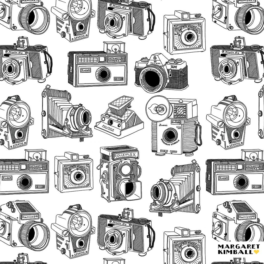 kimball_cameras2.jpg