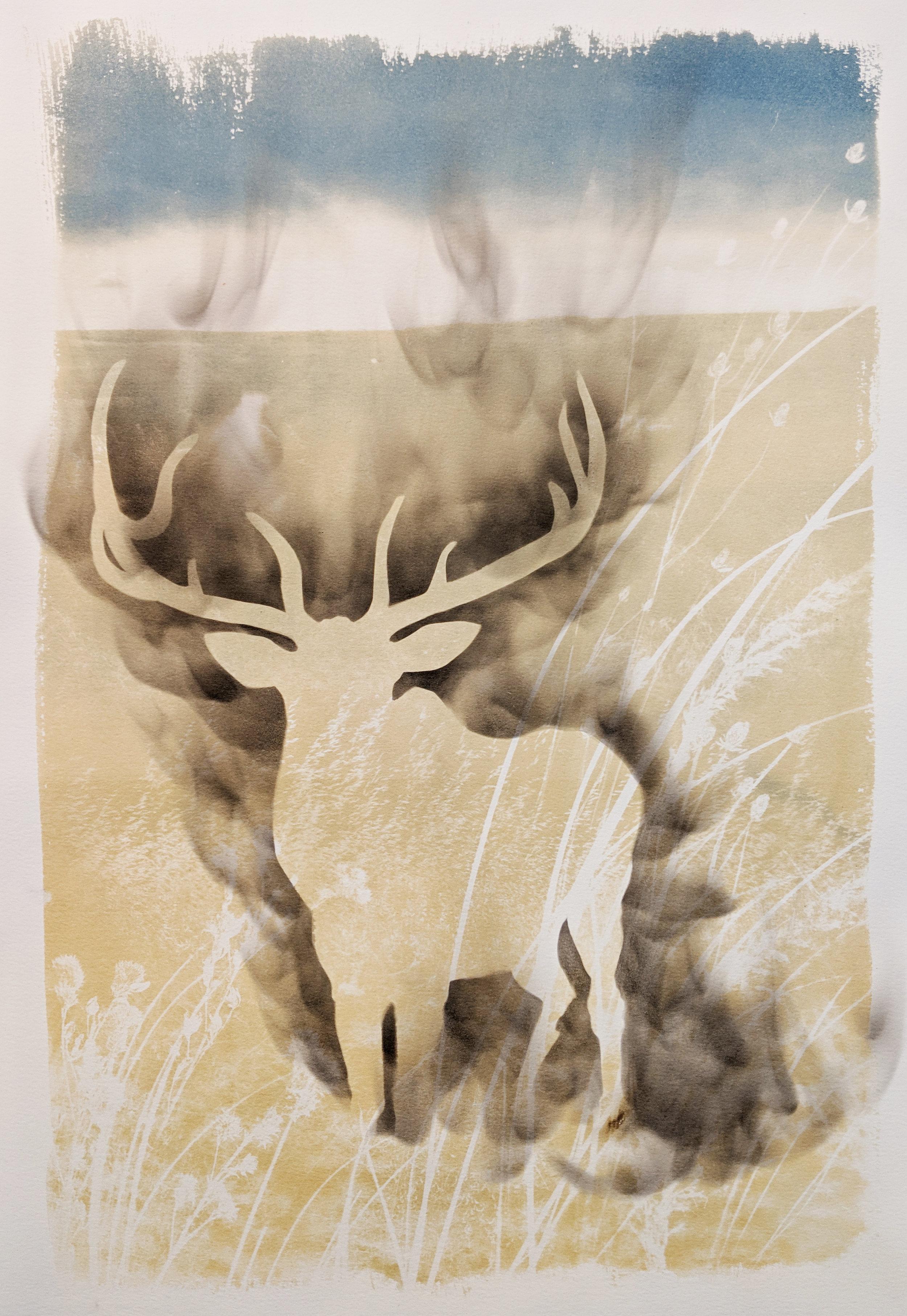 American Elk.jpg