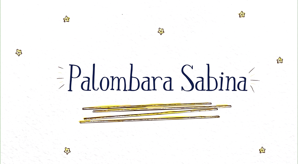 Palombara.png