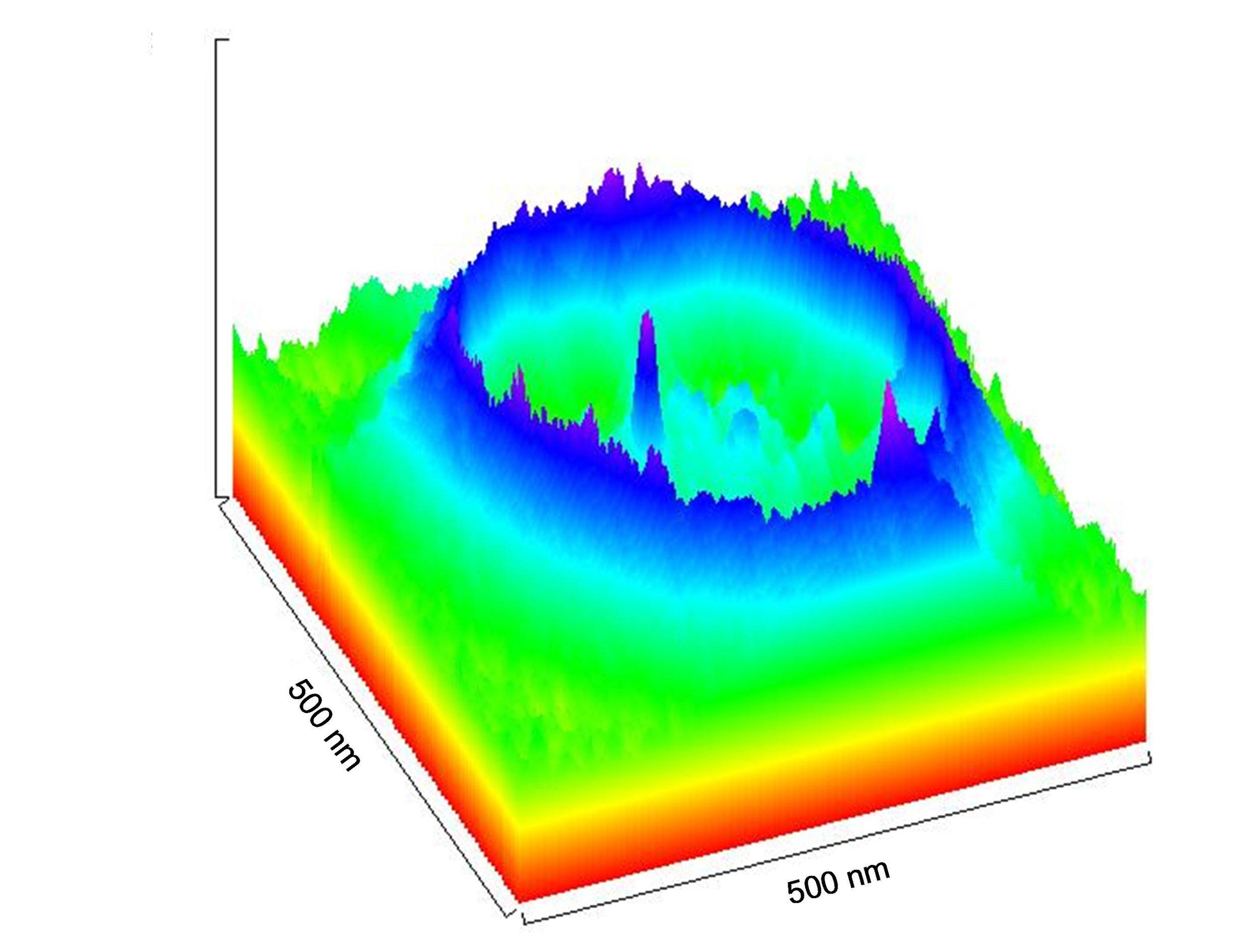 channel in a flattened liposome.jpg