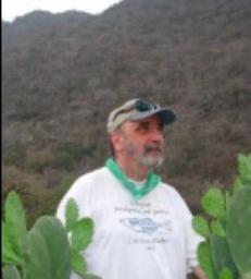 William Jeffery   Professor | Department of Biology