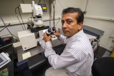 Utpal Pal   Associate Professor   Department of Veterinary Medicine