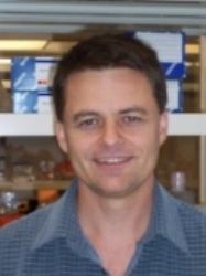Volker Briken   Professor | Department of Cell Biology & Molecular Genetics