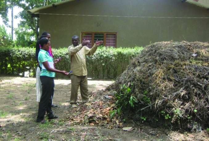 Compost pile constructed by Habari Maalum Staff