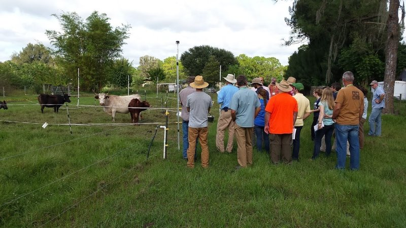 rotational-grazing-trainees-at-the-echo-global-farm_md.jpg