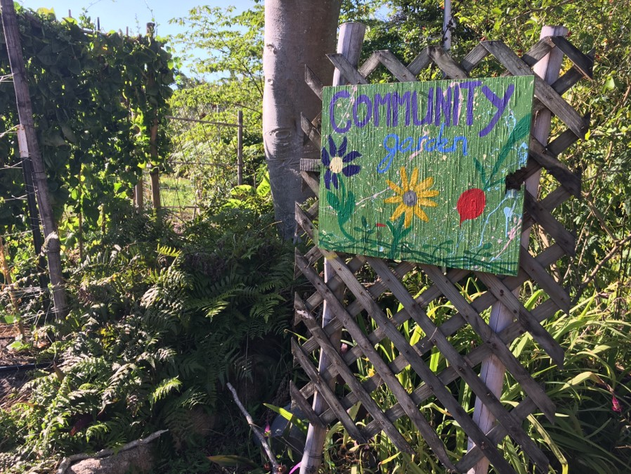 A brightly colored sign greets visitors to the active community garden located on ECHO's Global Farm in the Buckingham area of Fort Myers, FL.(photo by: Bianca Ross)