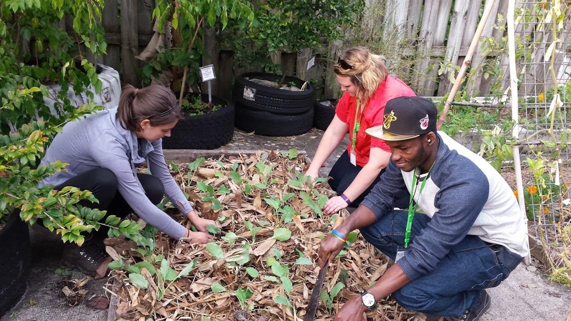 Gardening in the tropics
