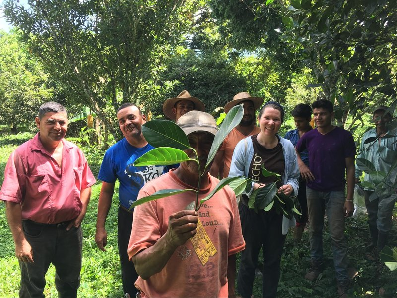 frutas-del-mundo-and-echo-staff-during-the-grafting-exchange_md.jpg