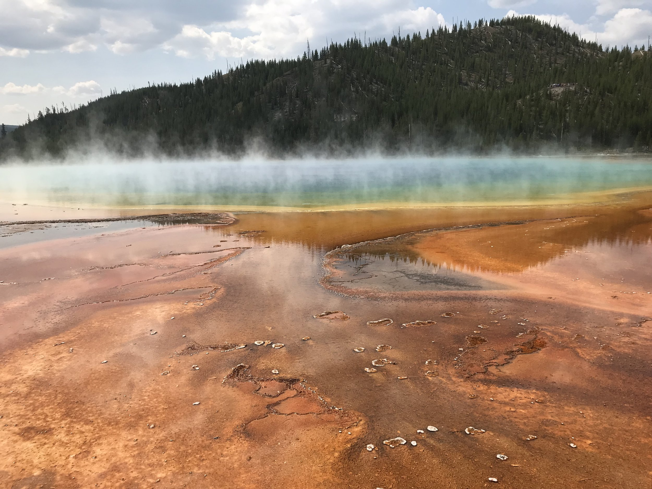 Grand Prismatic Spring- the largest and most vibrantly colorful of all the hot springs we experienced in Yellowstone. Just to give a little scale, the diameter of this spring is about 300 feet.
