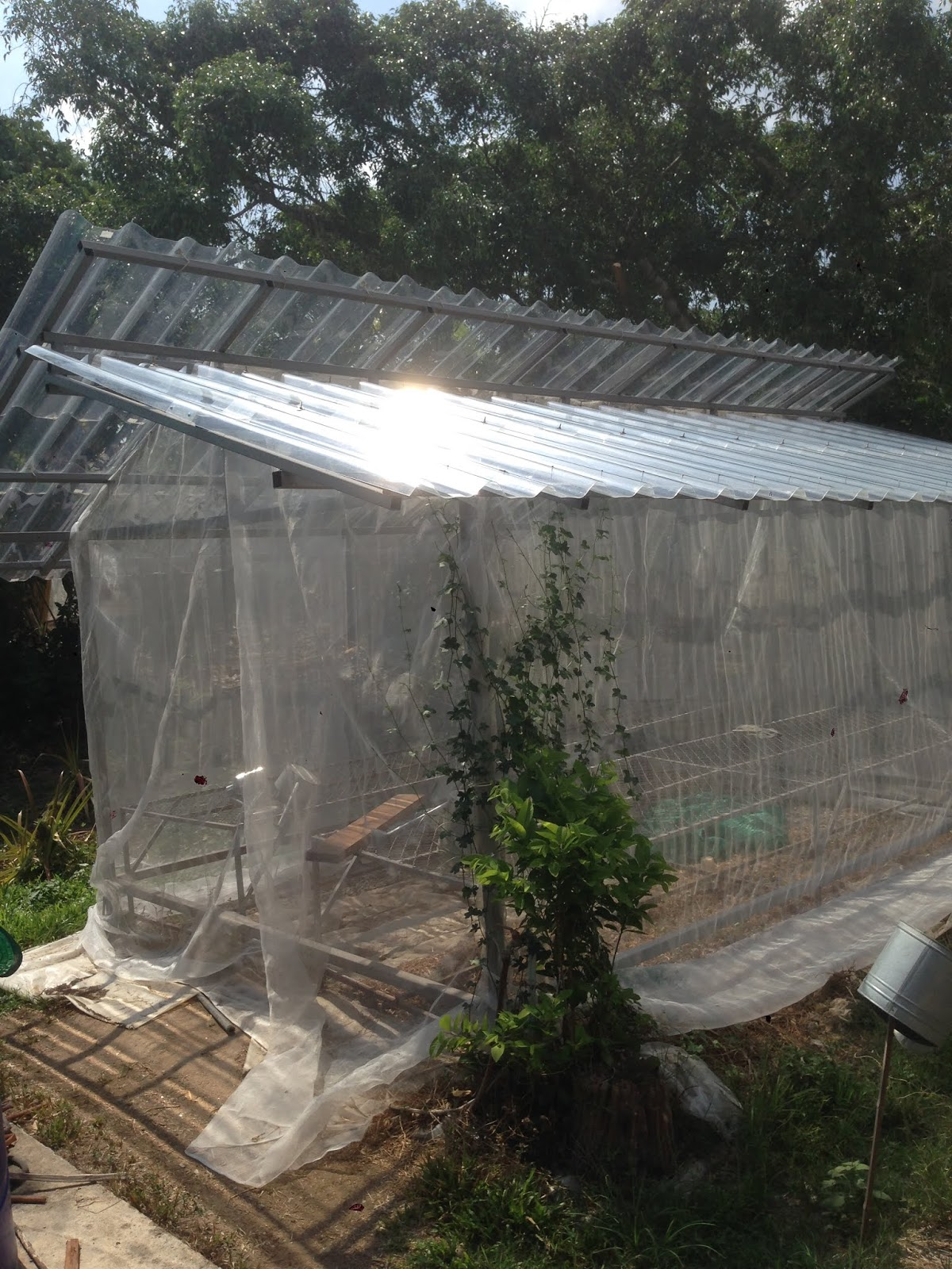 Greenhouses made out of accessible materials