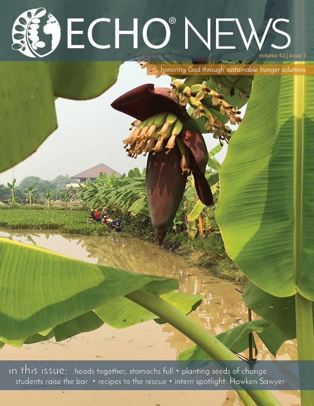 EN719 cover.jpg