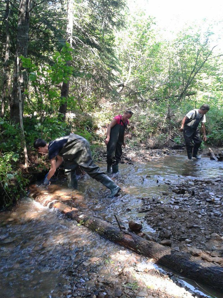 Kyle Lefort works on a digger log while at a river restoration workshop in Mabou.