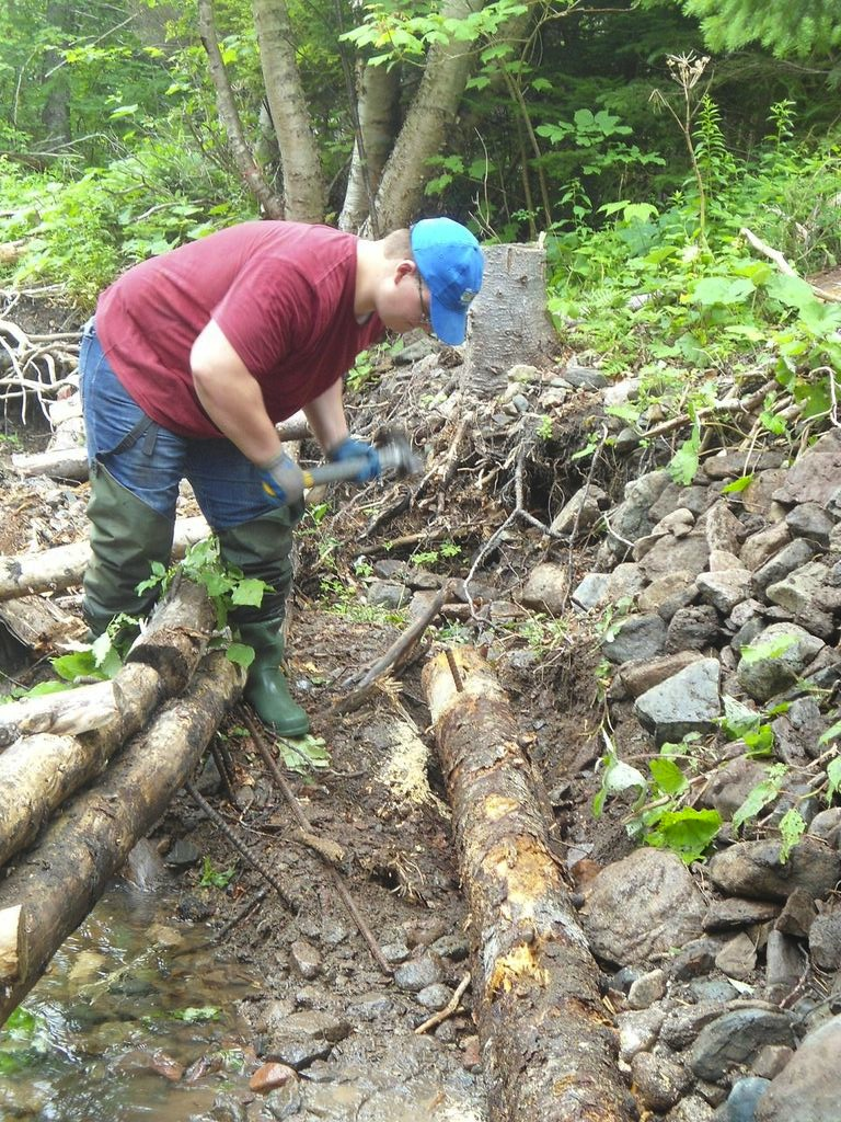 Jeremy Camus installs a bank log on Aucoin's brook.