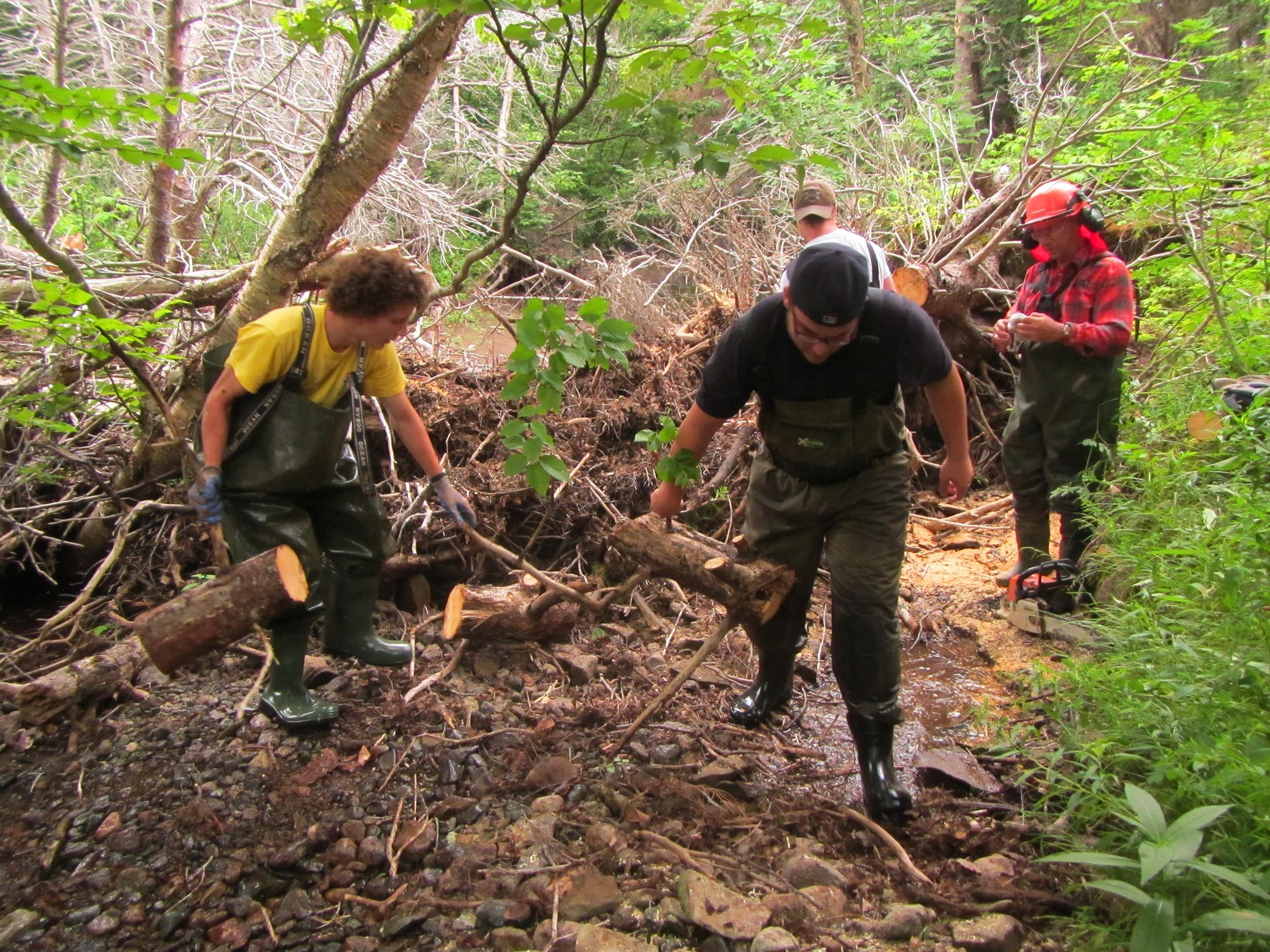 Antoine and Matt Burns removing the logs.