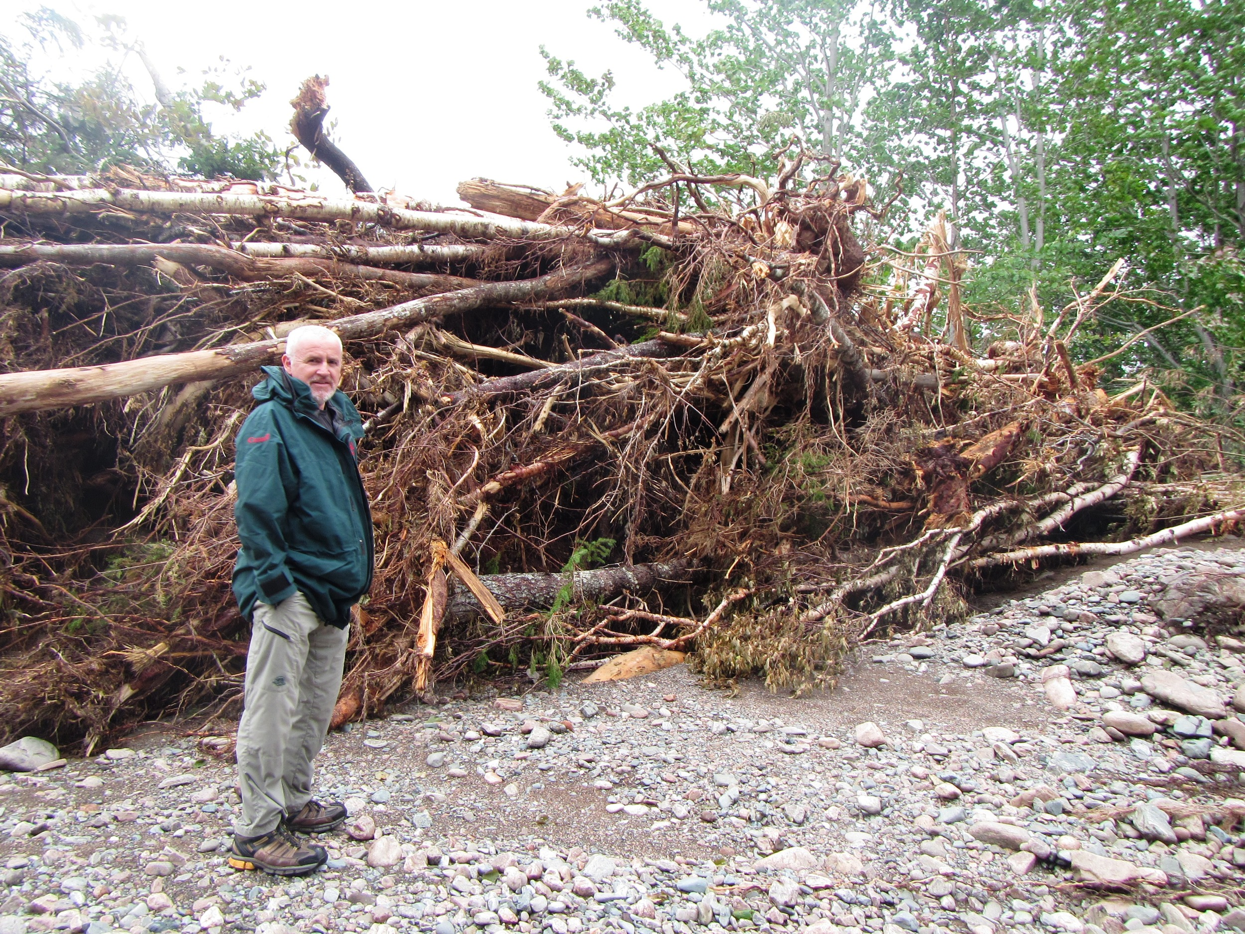 Archie Doucette, with Parks Canada, standing beside a large pile of debris near the outlet of Robert's Brook