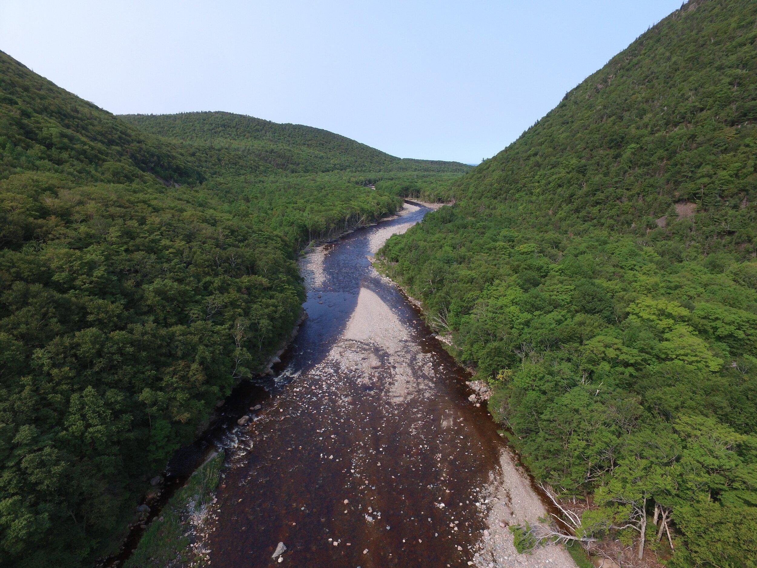 Above Fence Pool, upper rock retarding bars, east bank, looking downstream - AFTER.jpg