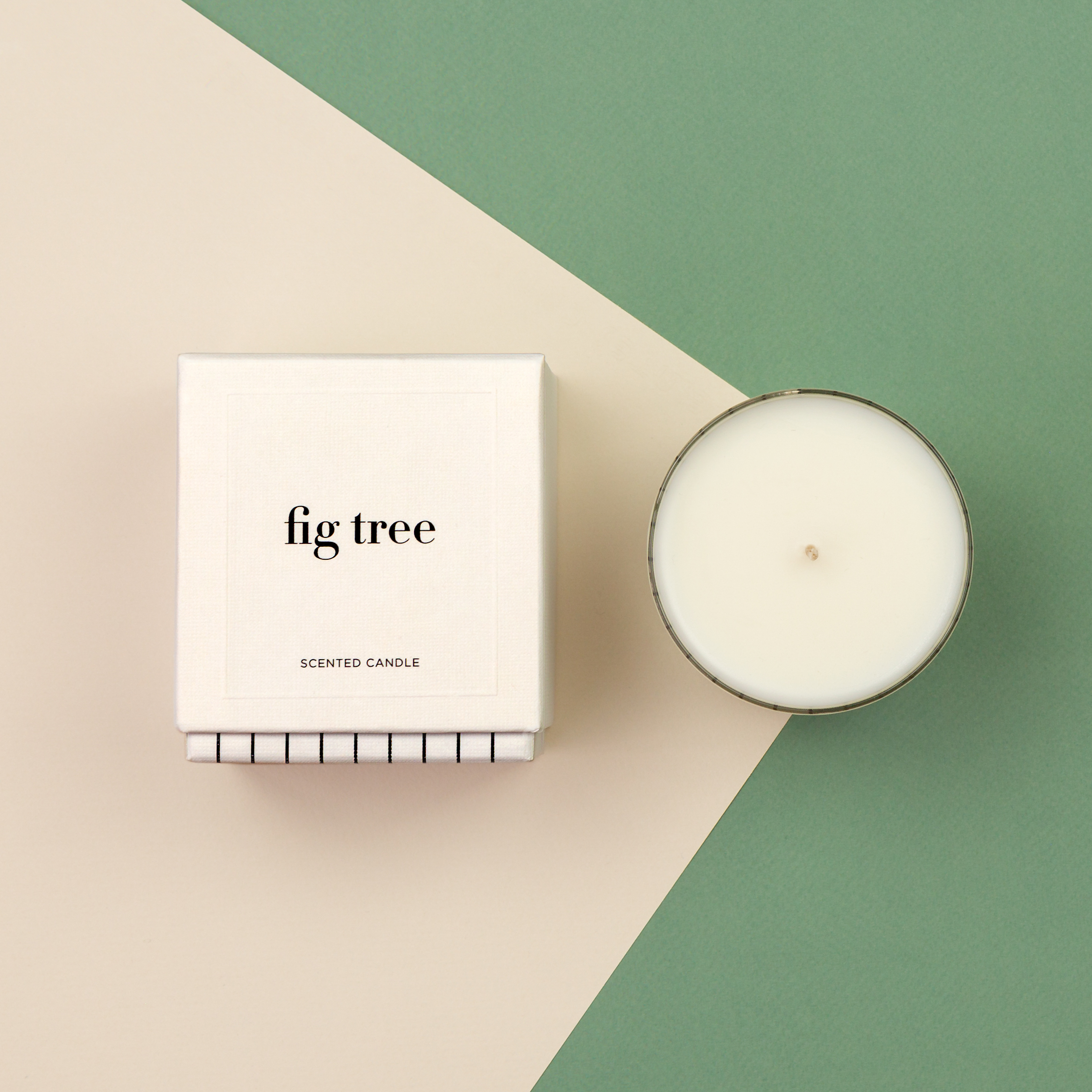 Studio_Stockhome_flat_fig tree.jpg