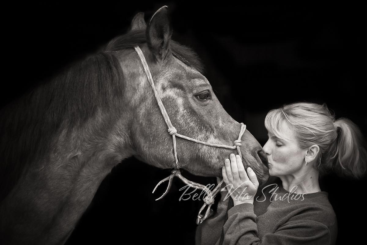 pet-portraits-photos-photographers-photography-fort-wayne-horse-2.jpg