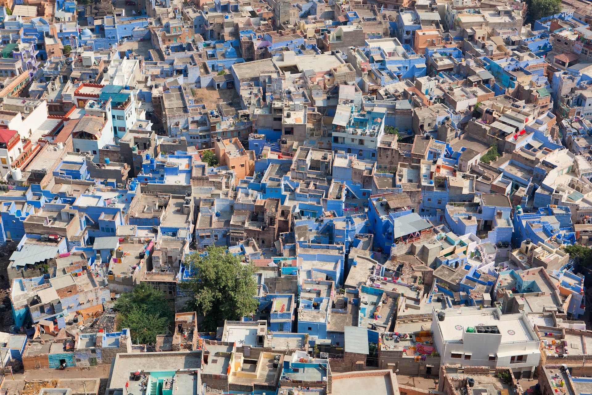 India-Travel-Rajasthan-Jodhpur-Blue-City_2.JPG