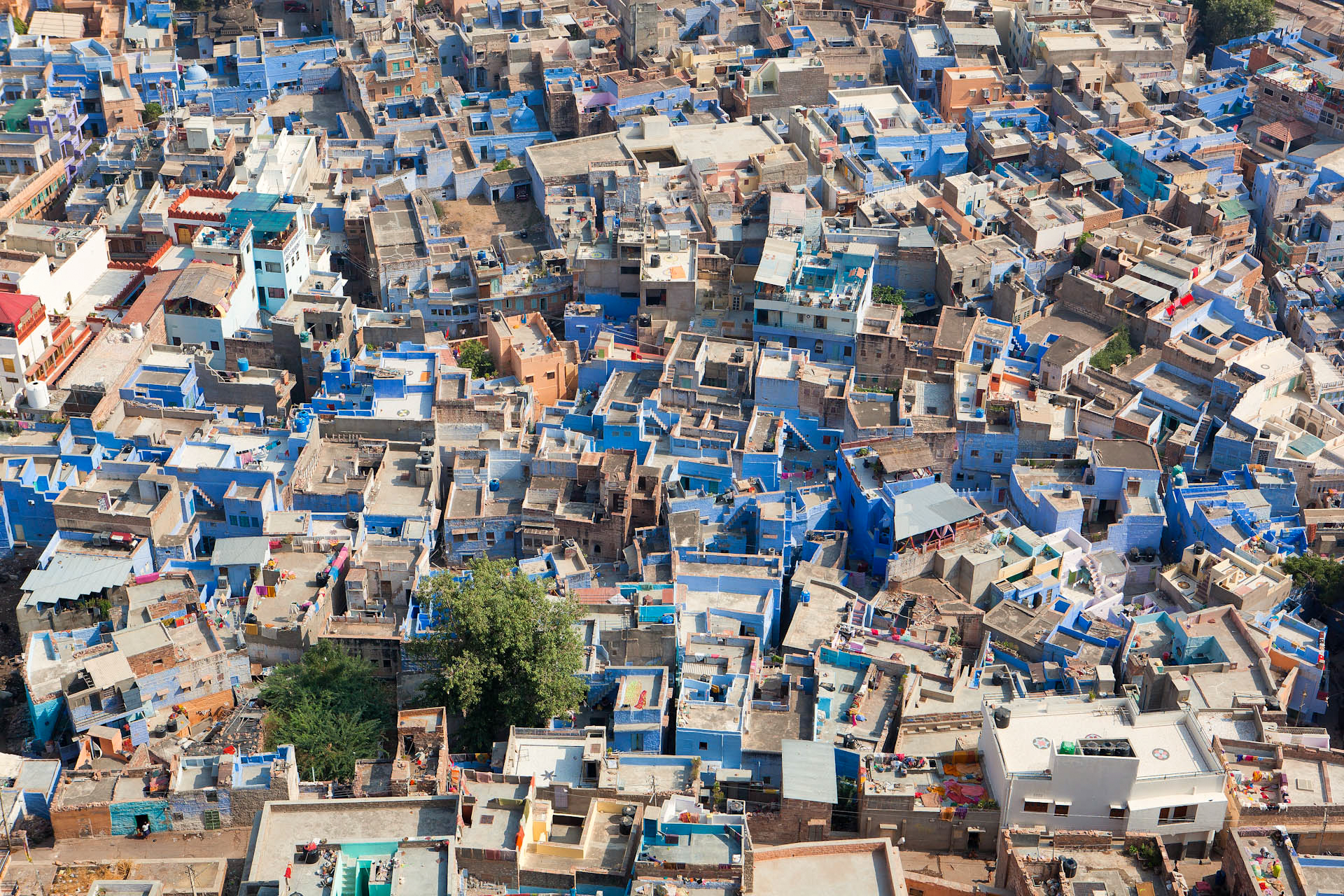 Jason_Bax_Travel_India-Travel-Rajasthan-Jodhpur_2.JPG
