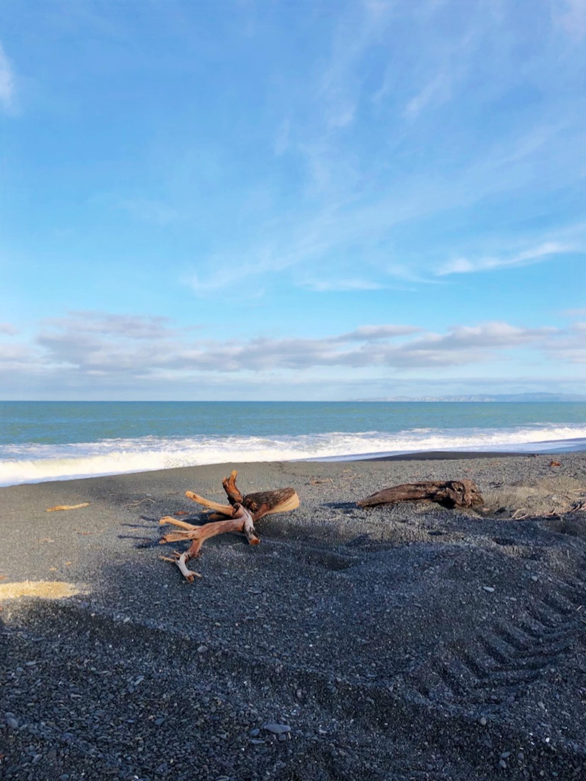 beach_napier_1.jpg