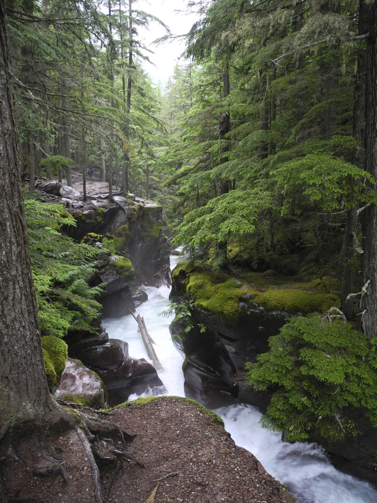 Upper Avalanche Gorge, looking downstream.