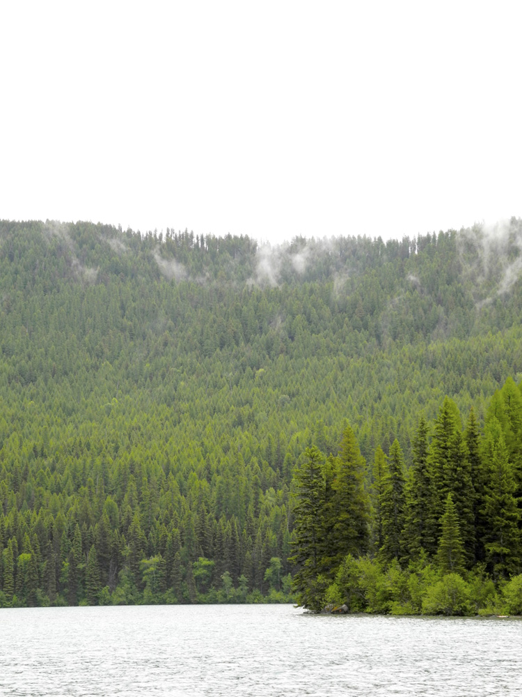 A misty afternoon hike around Bowman Lake in Glacier National Park - 2013