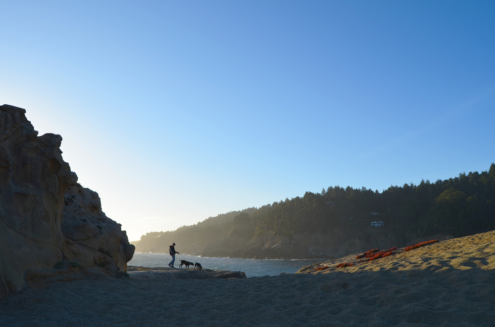 Unplugged at Ocean Cove // Highway 1 // Northern California