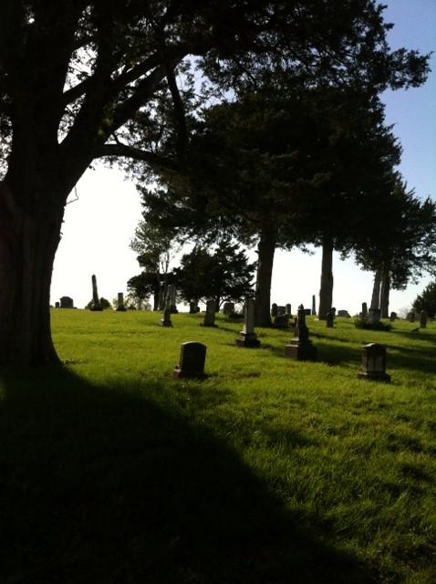 grave 2014 15.jpg