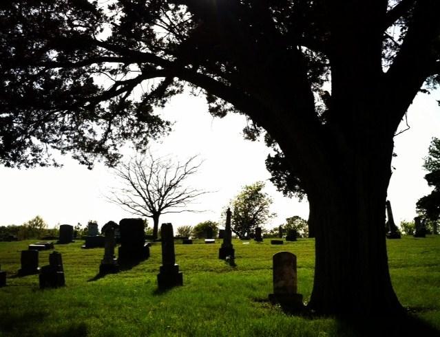 grave 2014 17.jpg