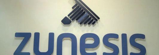 Zunesis, IT Company