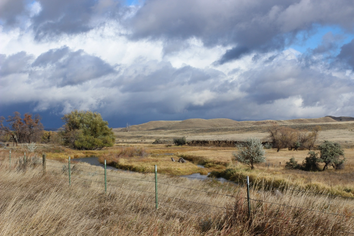Landscape after rain, Ucross, Wyoming