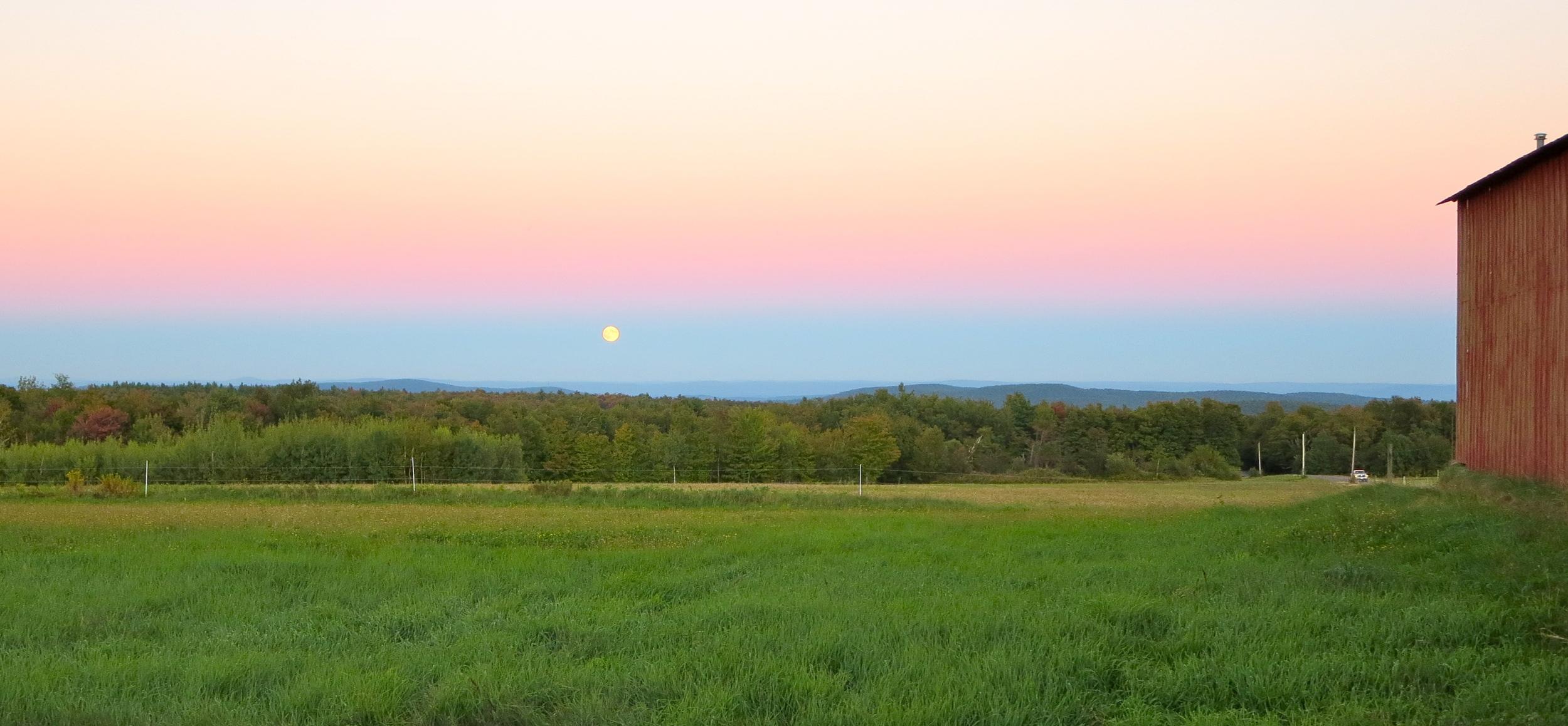 Moon in the east.jpg