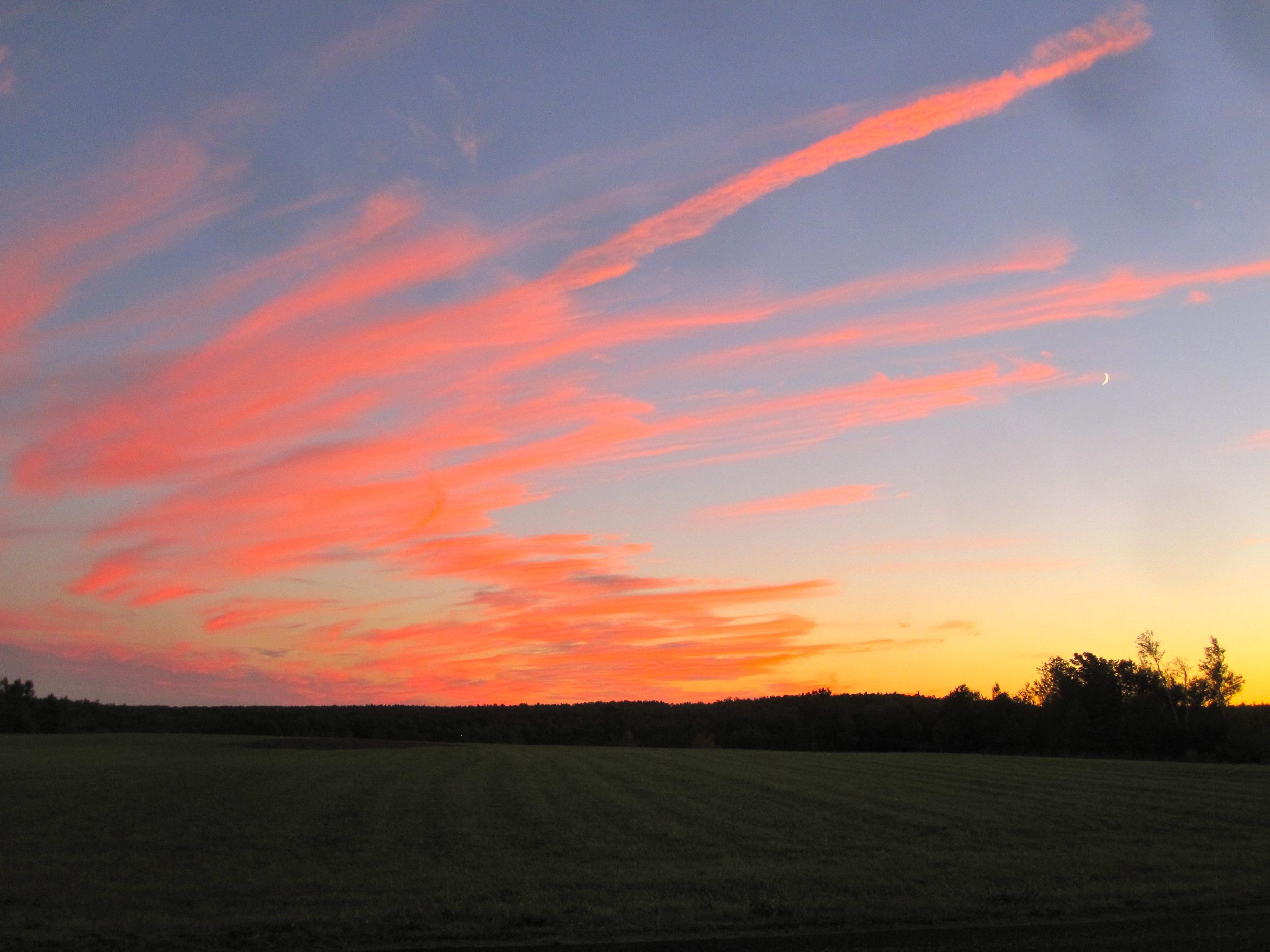 Summer sunset.jpg