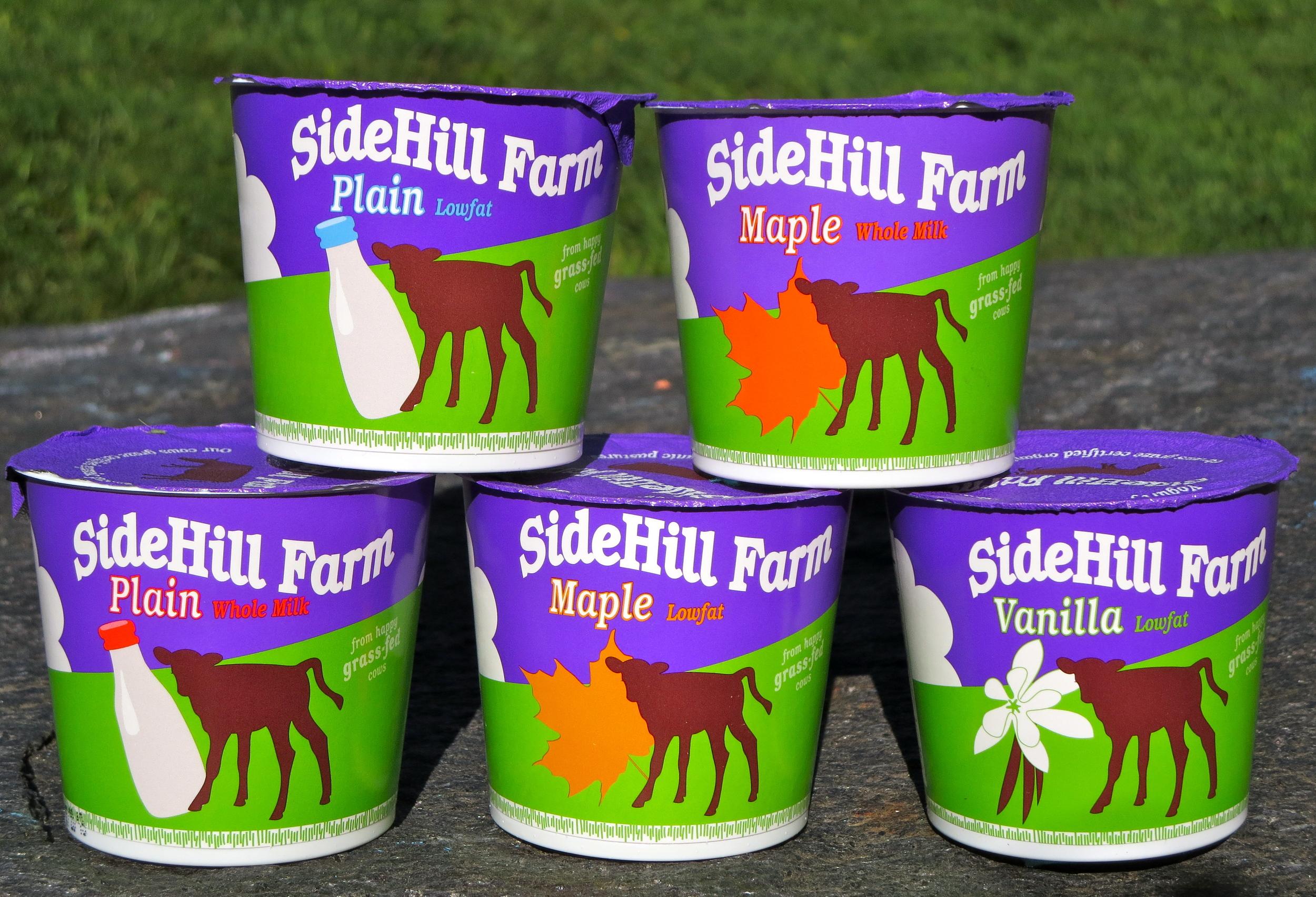 Sidehill-Yogurt-Cups.jpg