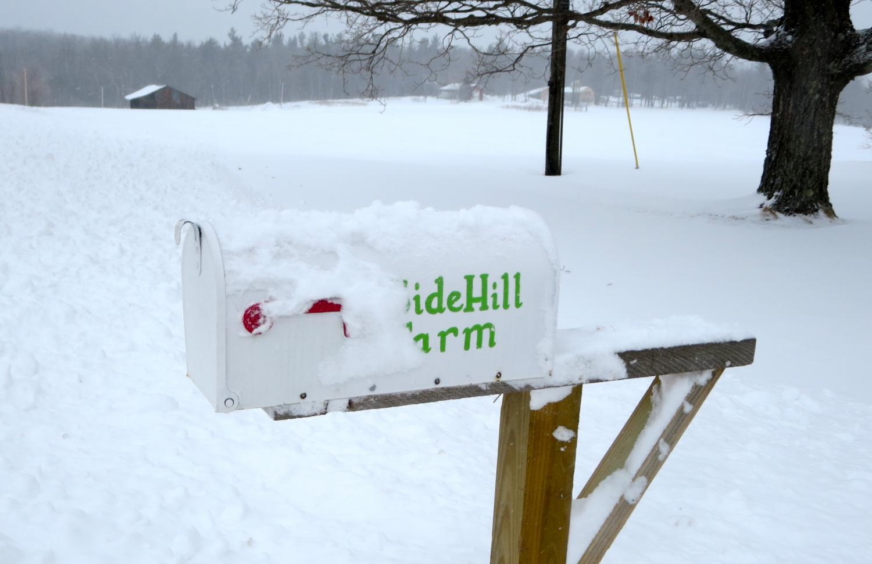 Sidehill-Mailbox.jpg