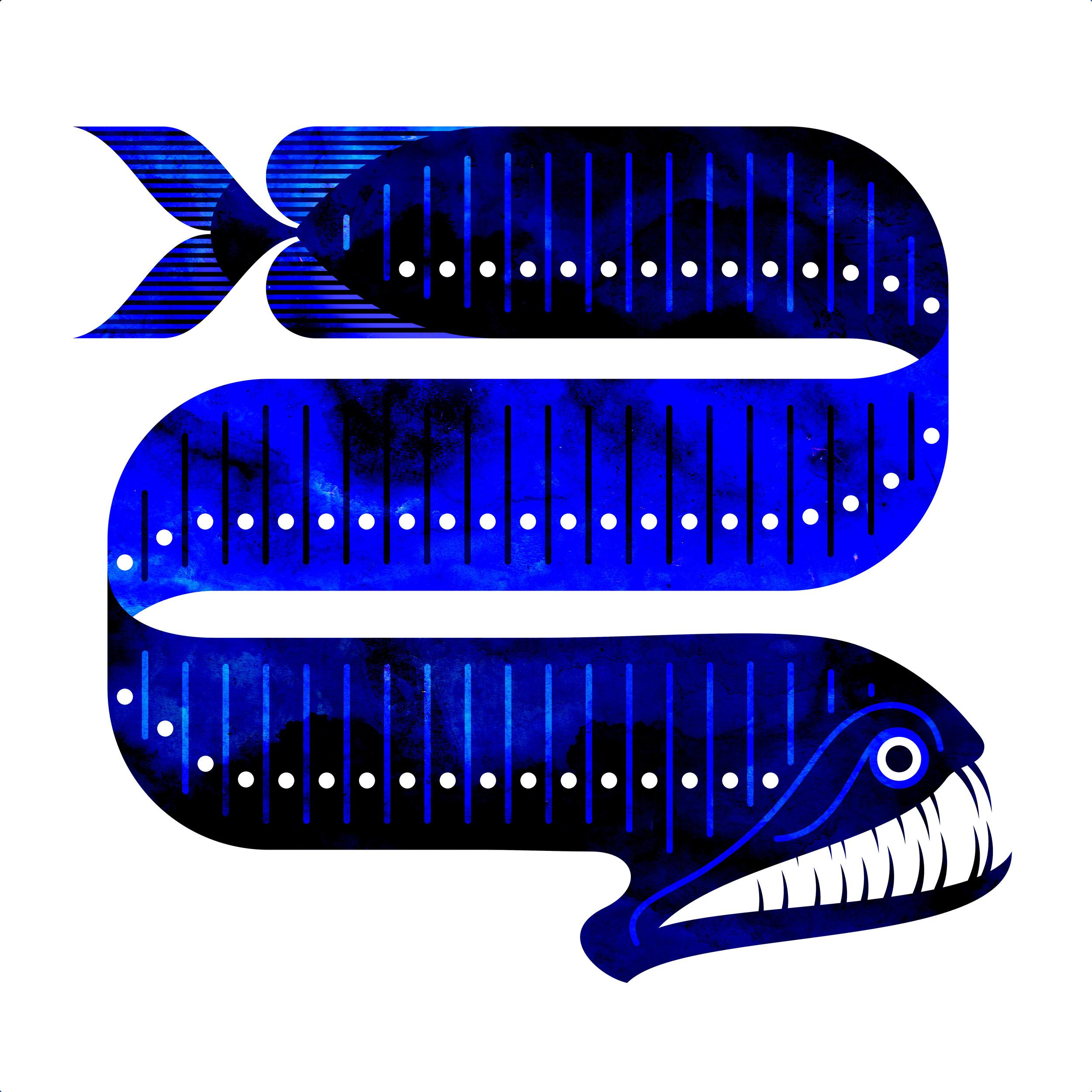 dragonfish4.jpg