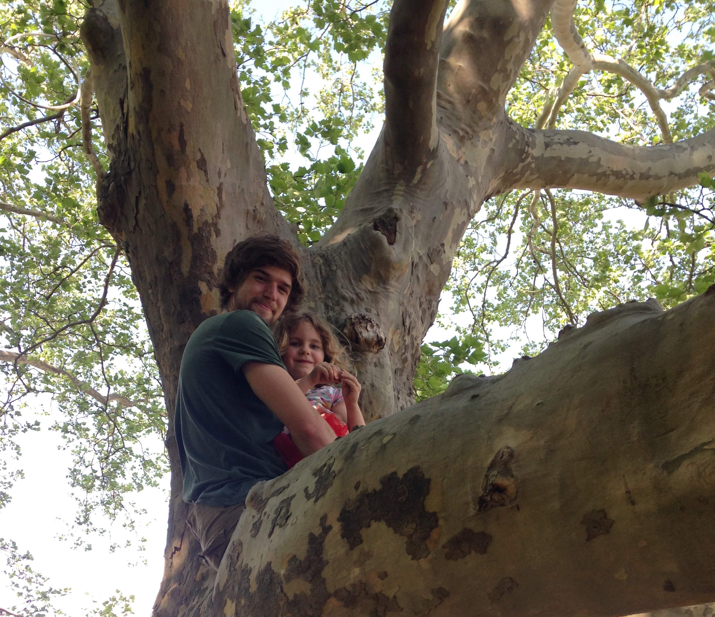 Mark and Hazel in the sycamore tree