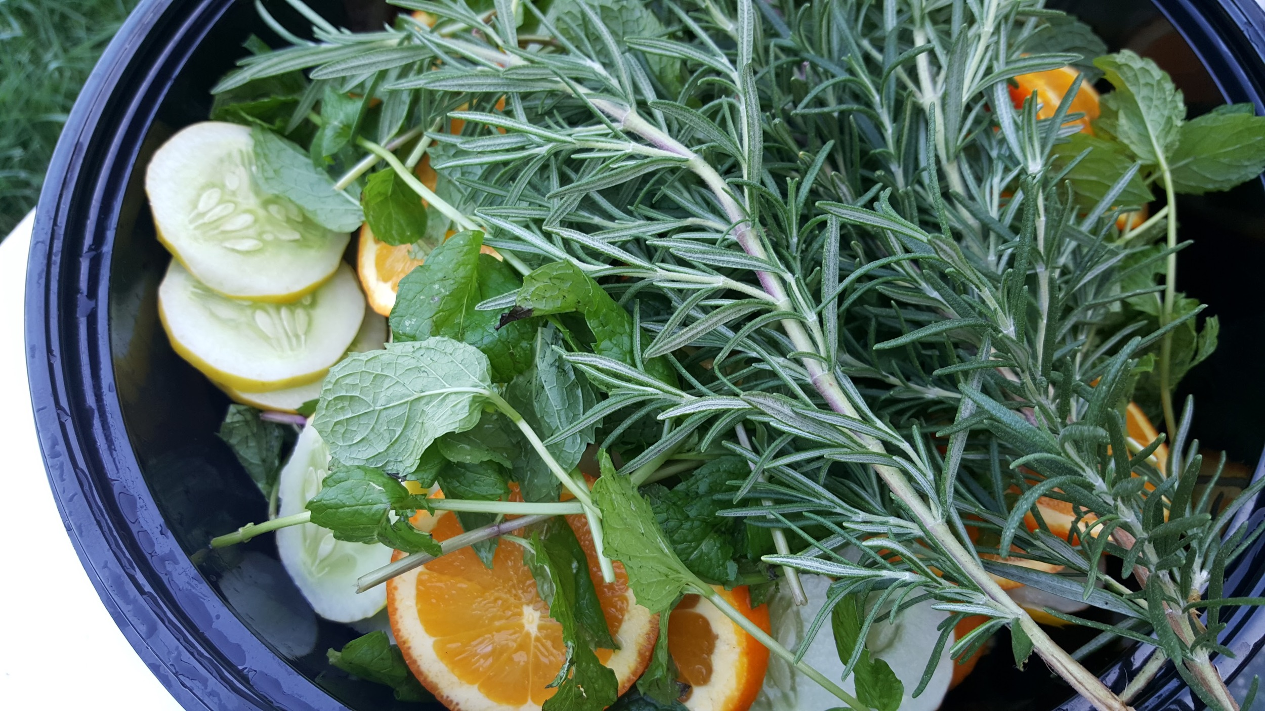 Fresh Rosemary, mint, white cucumbers (grown at # ThatRanch ) and fresh oranges make up our summer cuke water.