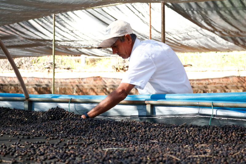 Notes Coffee - Coffee Farmer & Beans.JPG