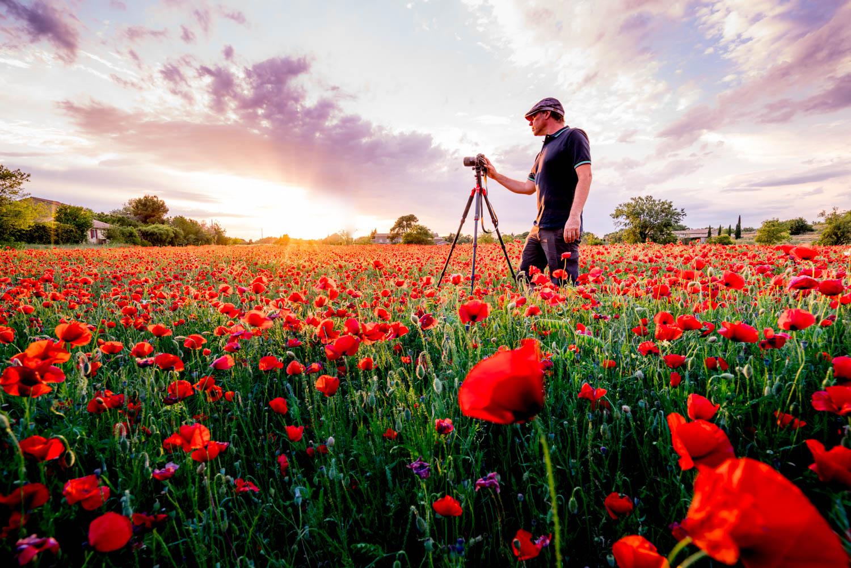 The Photographer-4.jpg
