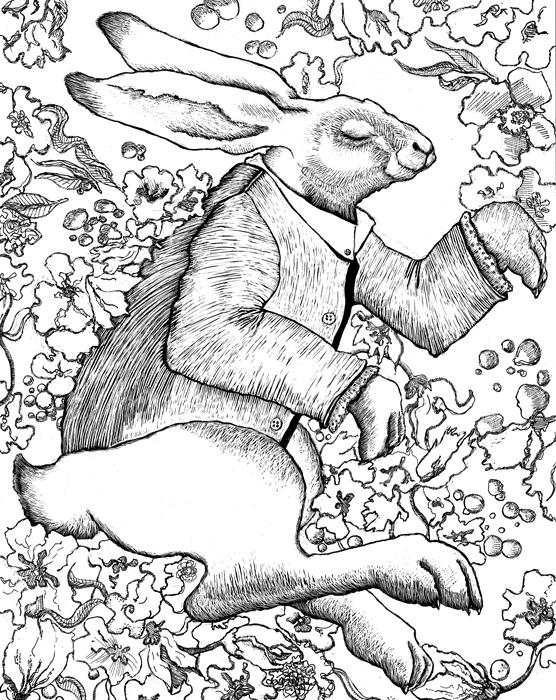 white_rabbit1.jpg