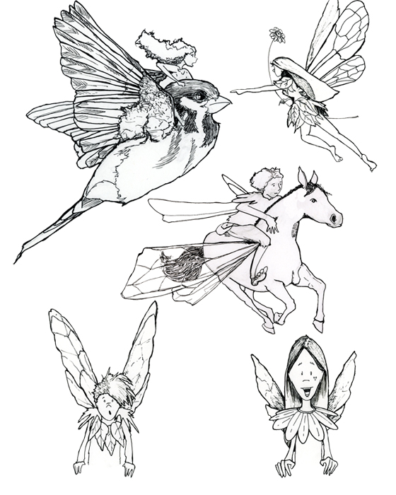 Fairy Sketches