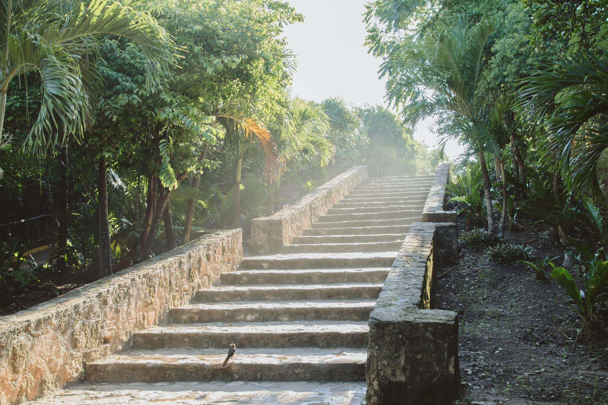 streaks-of-light-tulum-stairway