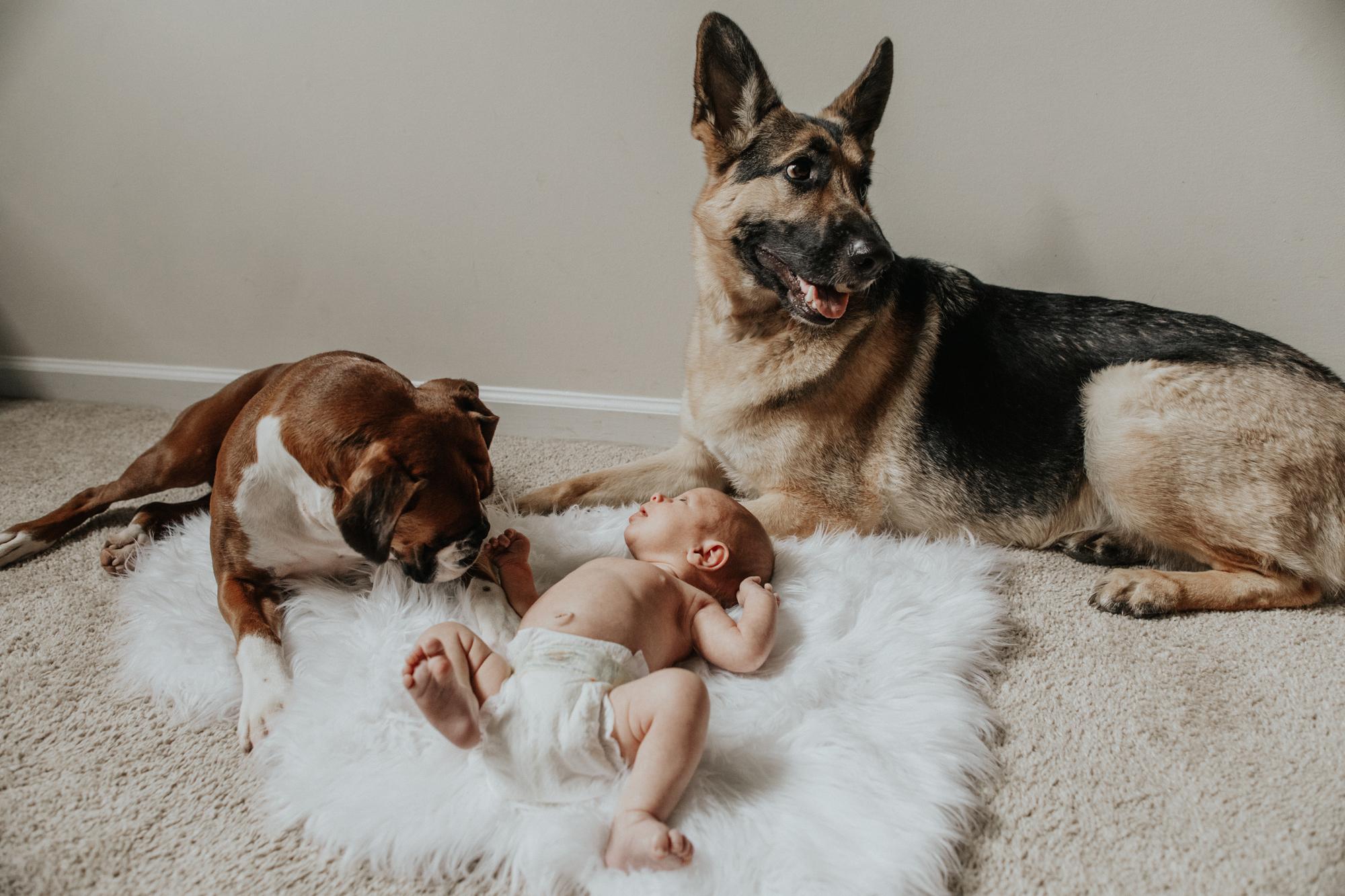 easton-pa-newborn-photography-lifestyle